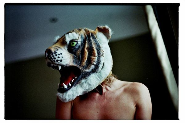 Lieven Symaeys: The Tiger Project